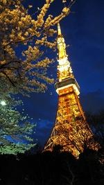 桜東京タワー